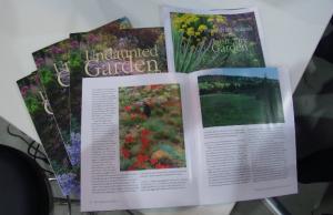 Undaunted Garden